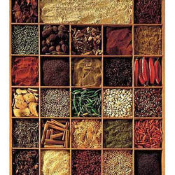 Spices for Food Recipes
