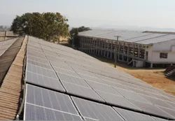 Solar Power Plants for Poultry Sheds