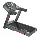 TM-315 Motorized D.C. Treadmill