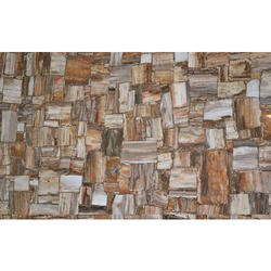 Petrified Wood Retro Slab