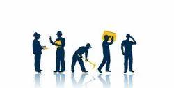 Professional Labour Services