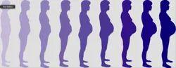 Pregnancy Care Service