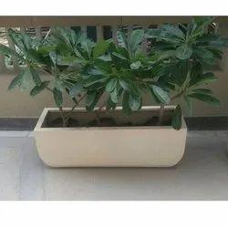 FRP Planter PL 22