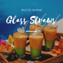 Glass Straw - Packs of 6 Glass Drinking Straws