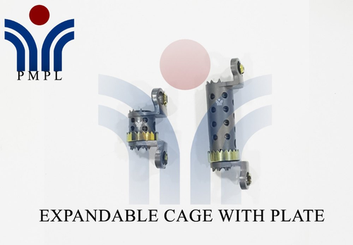 Expandable Jack Cage with Plate