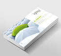 Iglow DL Flyer And Leaflet