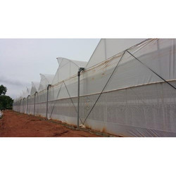 Ginegar UVA 205 N (C-659) Greenhouse Covering Film
