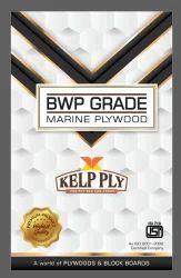 Kelp Ply Bwp Plywood