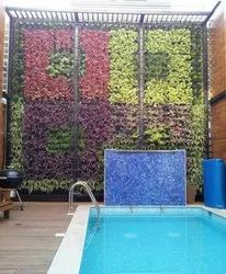 Color Full Natural Vertical Garden