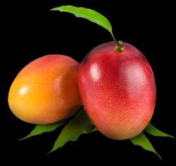 Raspuri Mango Pulp