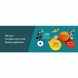 Software Development IT Consultancy Service
