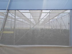 Ginegar Sunsaver (IR) Diffused Blue Greenhouse Covering Film