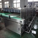 Bottle Pasteurizer