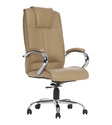 Executive Chair (The Broncear HB)