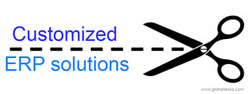 Custom ERP Software Online