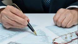 Litigation Service