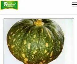Daksham seeds Hybrid Vegetable Seeds, for Farmer use as a seeds materials