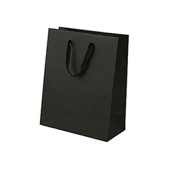 ce7ad193a7 Black Plain Paper Shopping Bag