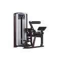 Lower Back Gym Equipment