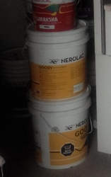 Nerolac Goody Paint