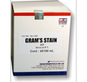 Grams Stain Kit