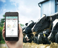Dairy Management Software