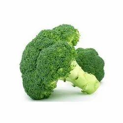 A Grade Maharashtra Fresh Green Broccoli, Gunny Bag, Packaging Size: 25 kg, 50kg