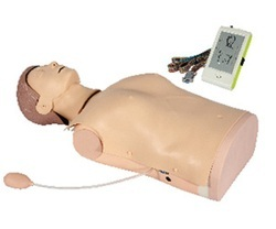 ADV Half Body CPR Training Manikin With Monitor ZX-CPR2000