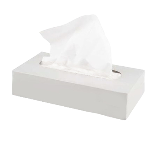 White Plain Tissue Box Size 20x20 Cm