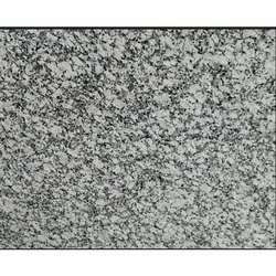 Polished Big Slab P White Granite, For Countertops, Thickness: 15-20 mm