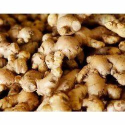 A Grade Pan India Fresh Ginger, Jute Bag, 20 and 50 Kgs