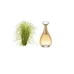 Natural Essential Vetiver Oil