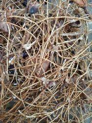 Tamarind Fibres (Imli Nus), Packaging: Packet