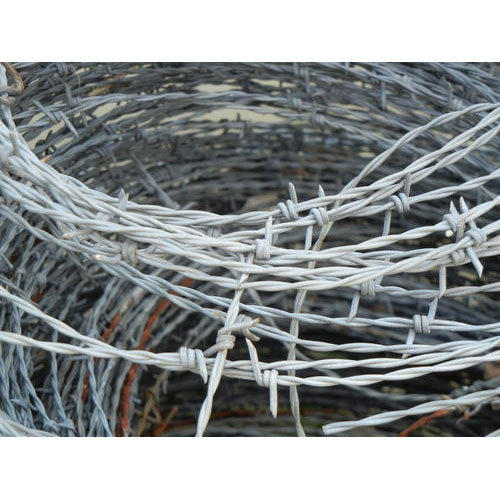 SS Barbed Wire Fencing