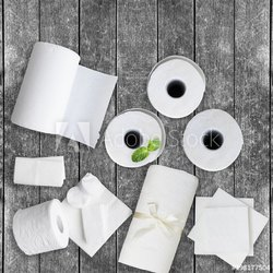 Toilet Paper and Napkins Project Report Consultancy