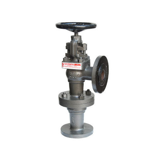 Qinn Cast Iron Accessible Feed Check Valve, Size: 50 mm