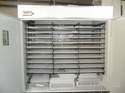 TM&W - Industrial Incubator Or Hatcher of 4848 Eggs capacity
