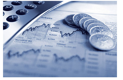 Financial Forecasting And Planning Services in Sector-06