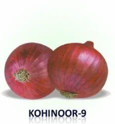 Kohinoor-9 Onion Seeds