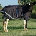 Cow Winter Blanket