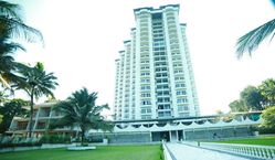 1 BHK Apartments Construction Services