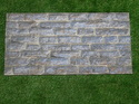 Elevation Exterior Tiles