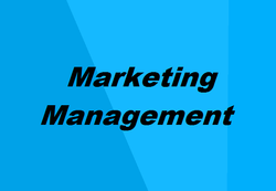 Marketing management software solutions & services