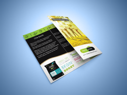 Digital 3 Days Packaging Branding Graphics Designing, For Illustrator, Photoshop & Corel, Size Of The Logo: Appropriate