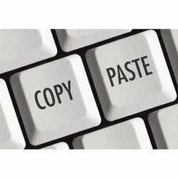 Copy Paste Data Entry Projects