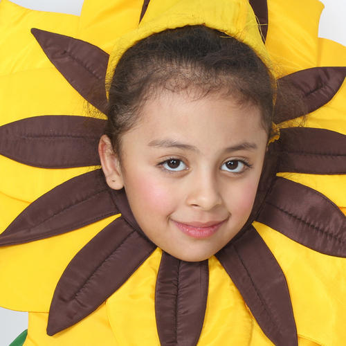 f9ace06a9e6a9 Girls Sunflower Costume at Rs 450 /set | Kids Costumes | ID: 18315990048