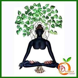 Nagpur Handicraft Wrought Iron Modern Under Tree Black Buddha