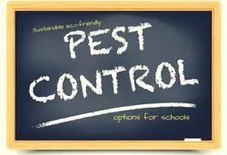 Pest Control Service For School