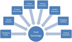 BTech Food Technology Course