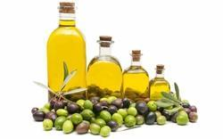 Olive Oil Testing Analysis Laboratory Service